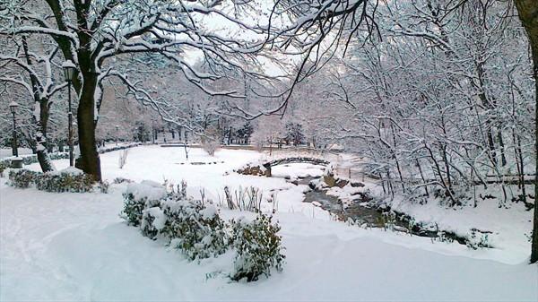 Картинки по запросу кисловодск зима