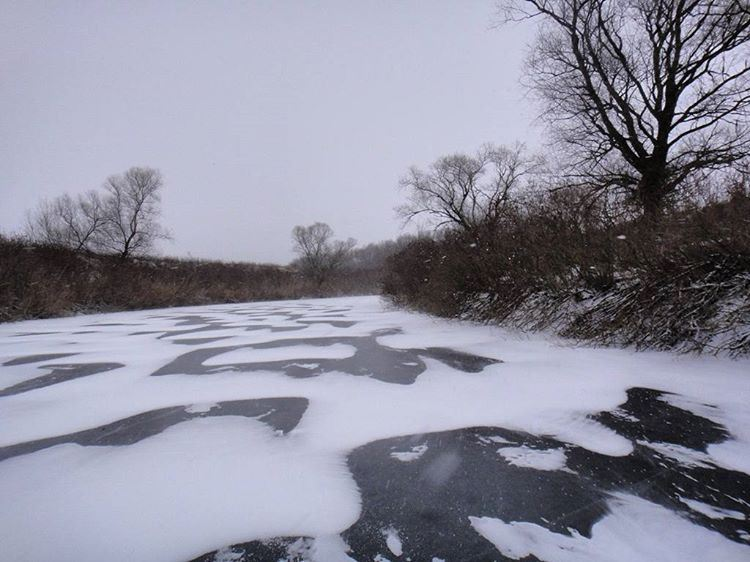 Сегодня синоптики прогнозируют мокрый снег вотдельных районах Кубани