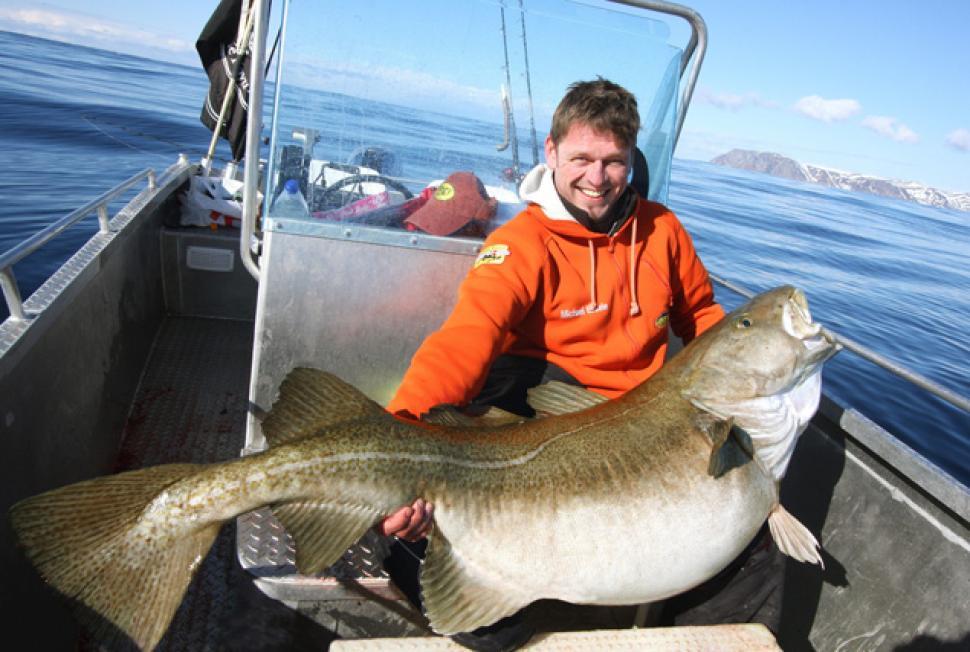 активатор клева big fish
