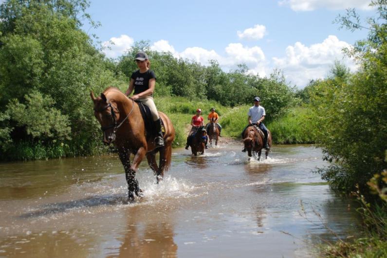 конный туризм в россии цены