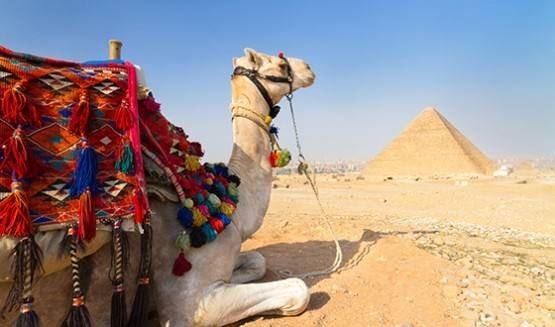 Египет не откроют раньше середины 2018-го года