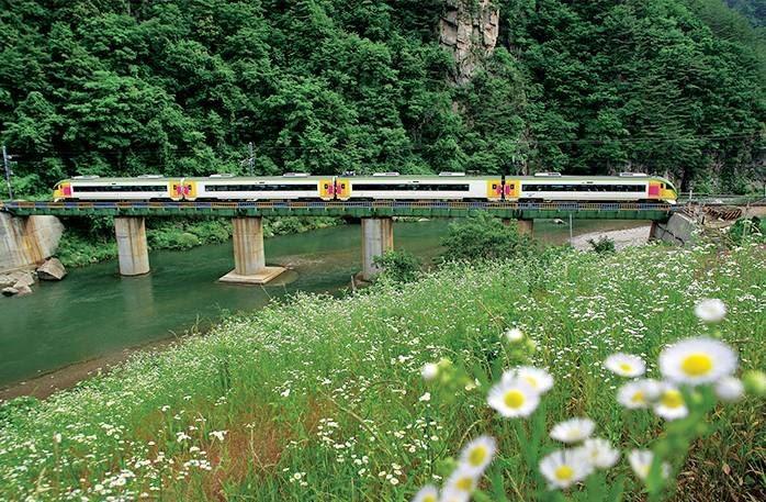 Южная Корея. Путешествие по стране на туристических поездах. Видео