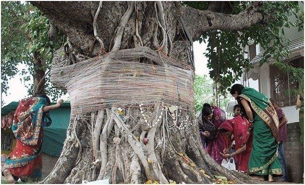 Необычные свадебные традиции и обряды народов Индии и островов Тихого океана