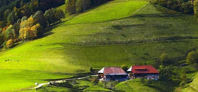 германия природа фото