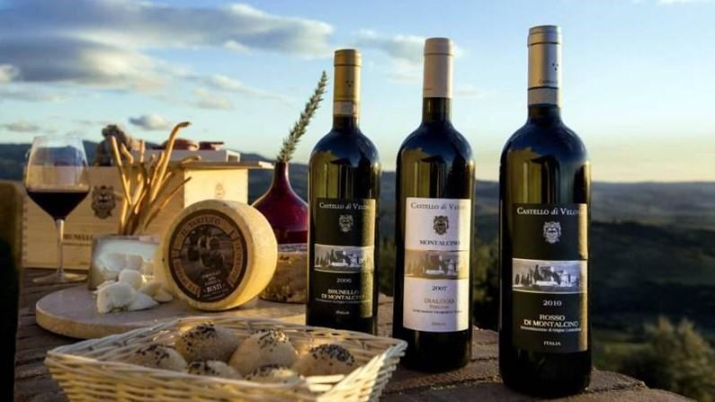 Какое вино купить в Италии – известные винодельни и национальные марки | 447x795