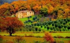 Осенние маршруты. Италия. Тоскана. Видео