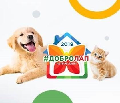 Приглашаем Вас в Московский Зоопарк!
