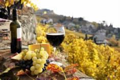 Цены на испанское вино взлетели из-за плохого урожая винограда