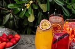 Рецепты сангрии от шеф-бармена