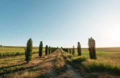 «Долина Лефкадия» получила награду за самый инновационный музей вина