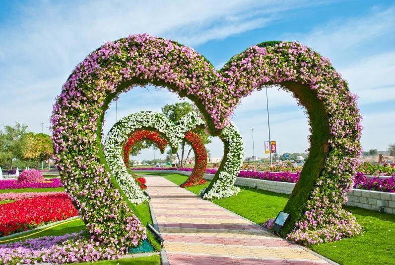 Дубай парк цветов отзывы шуба дубай