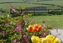 Twitchen Farm Bed & Breakfast Challacombe